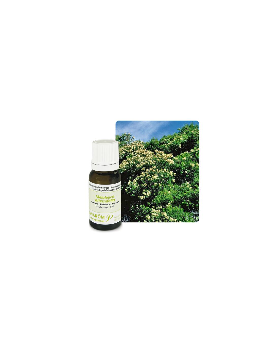 Huile essentielle tea tree arbre th pranarom mes tendances bio - Huile essentielle d arbre a the ...