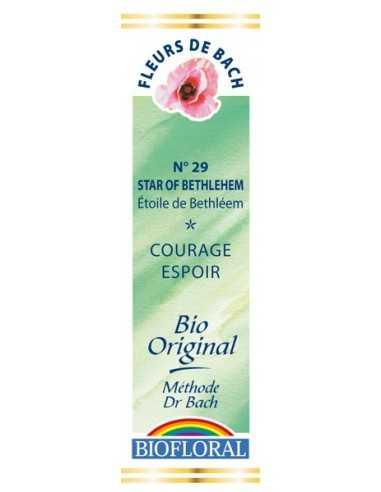 Star Of Bethleem Fleur de bach BIOFLORAL