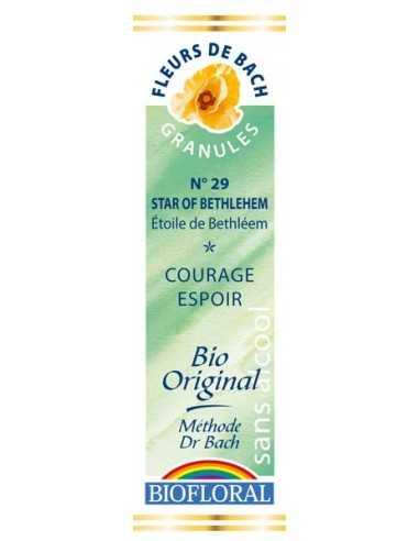 Star Of Bethleem Fleur de Bach Bio BIOFLORAL
