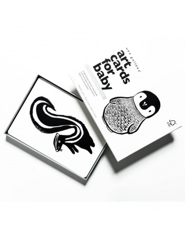 cartes-noire-et-blanches-pinguoin-wee-gallery-mes-tendances-bio